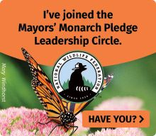 Mayors_Monarch_Badge